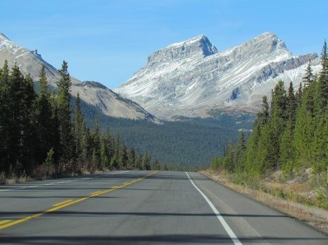 Icefield's Parkway Highway führt mitten durch die Rockies - (c) tanadia.com
