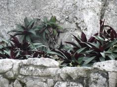 02 Tulum Ruines (c) tanadia.com