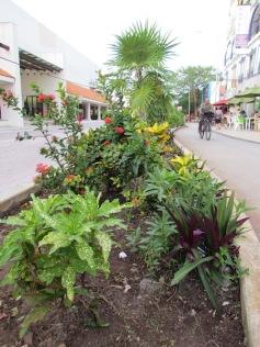 04 Outdoor Indoor Pflanzen (c) tanadia.com