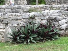 08 Tulum Ruines (c) tanadia.com