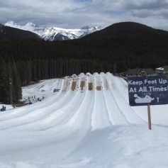 Tubing on Mt. Norquay, AB (c) tanadia.com