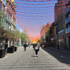 Rue Sainte-Catherine - Copyright: tanadia.com